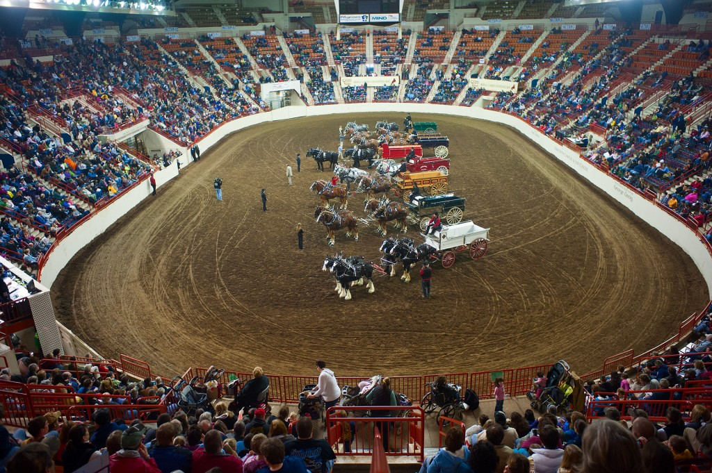 Draft Horse competition in the Main Arena of the Pennsylvania Farm Show Complex, Harrisburg, PA