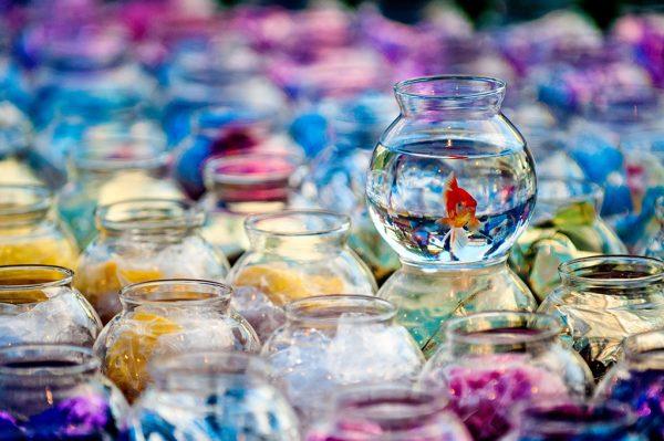 Carnival Fish Bowl