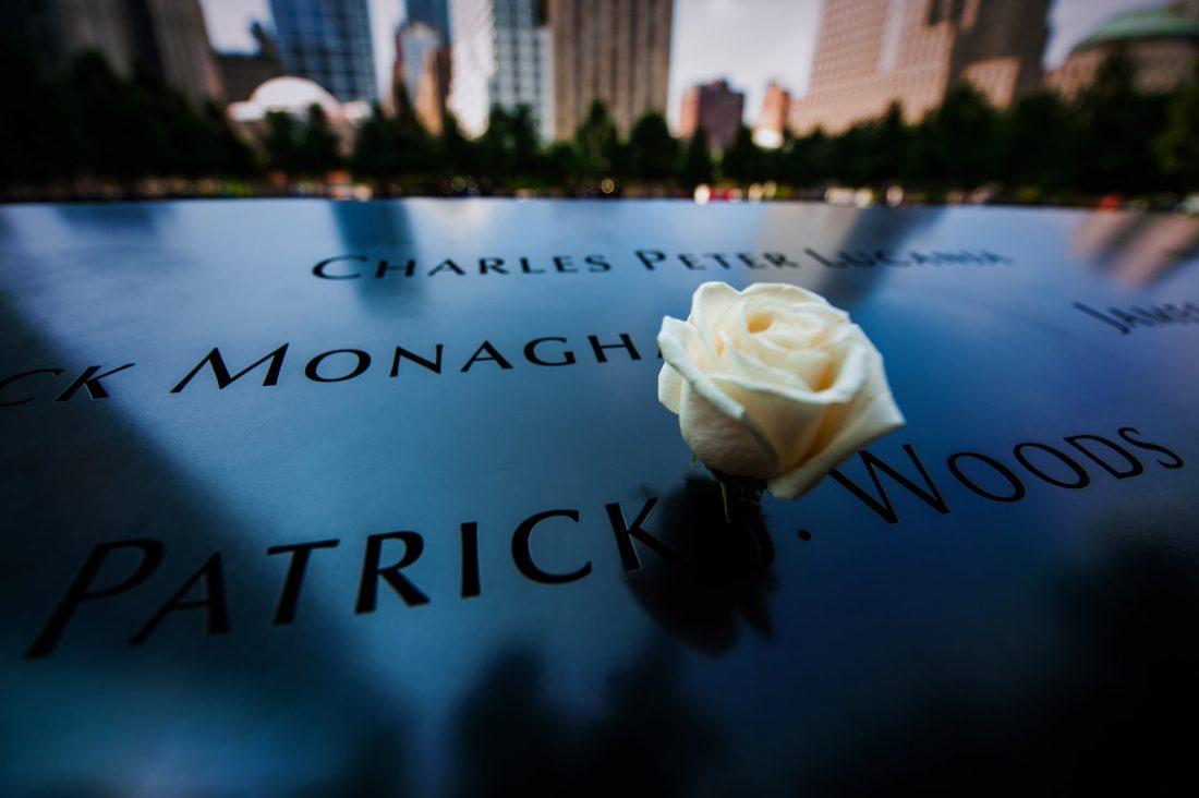 A single white rose at National September 11 Memorial & Museum.